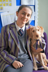 Holy Trinity's School Dog Makes Big Impact